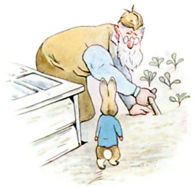 http://www.tonightsbedtimestory.com/wp-content/uploads/2008/11/the-tale-of-peter-rabbit-10.jpg
