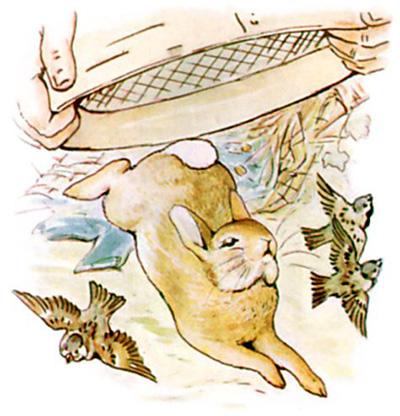 The Tale Of Peter Rabbit (Beatrix Potter)