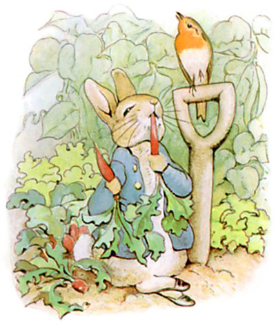 The Tale Of Peter Rabbit (Beatrix Potter)